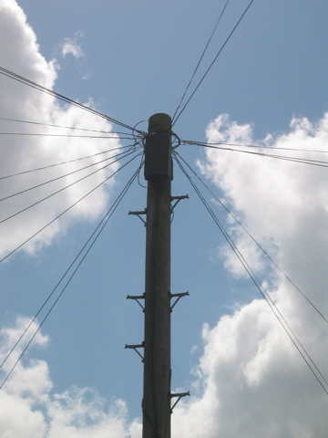 Telephone Pole, Cambridge UK