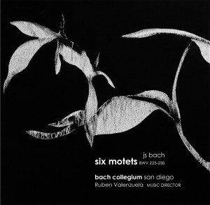 Bach Collegium San Diego : Six Motets