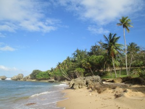 The beach at Bathsheba on the east coast of Barbados